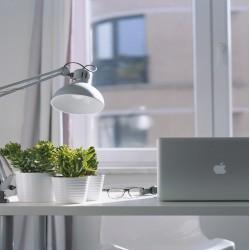 Transform Your Office Into A... Garden