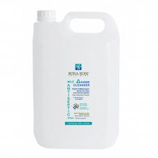 Antiseptic Hand Cleanser antiseptic hand spray