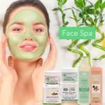 Face Spa Rituals